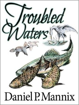 Troubled Waters Book Cover