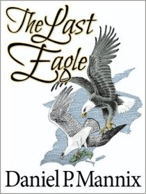 The Last Eagle Book Cover